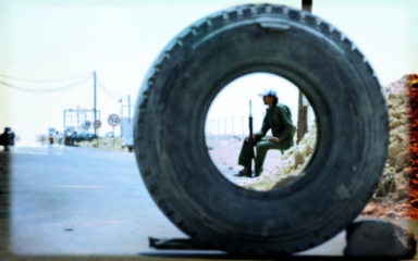 Circle Tire View