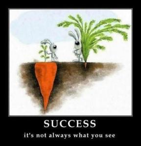 Success it's now always what you see