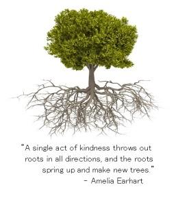 tree_roots_amelia earhart