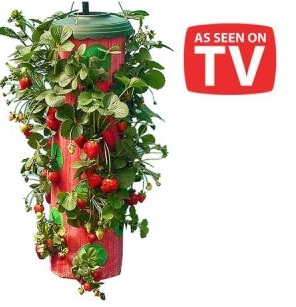Wabi Sabi and Upside Down Tomatoes as seen on TV