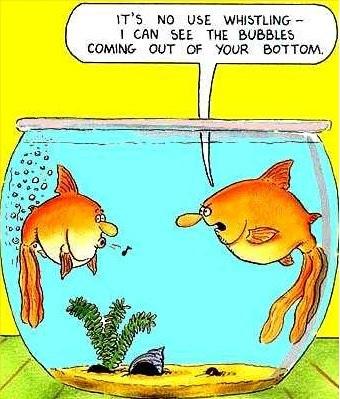 Foul Fish
