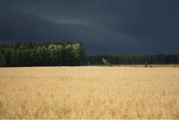 Waiting for the Thunder by finncom dot deviantart dot com