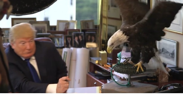 Trump gets attacked by ameican eagle