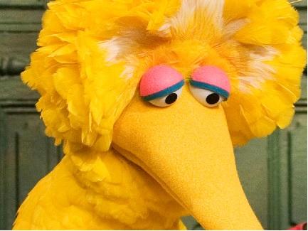 Dont Cry Big Bird